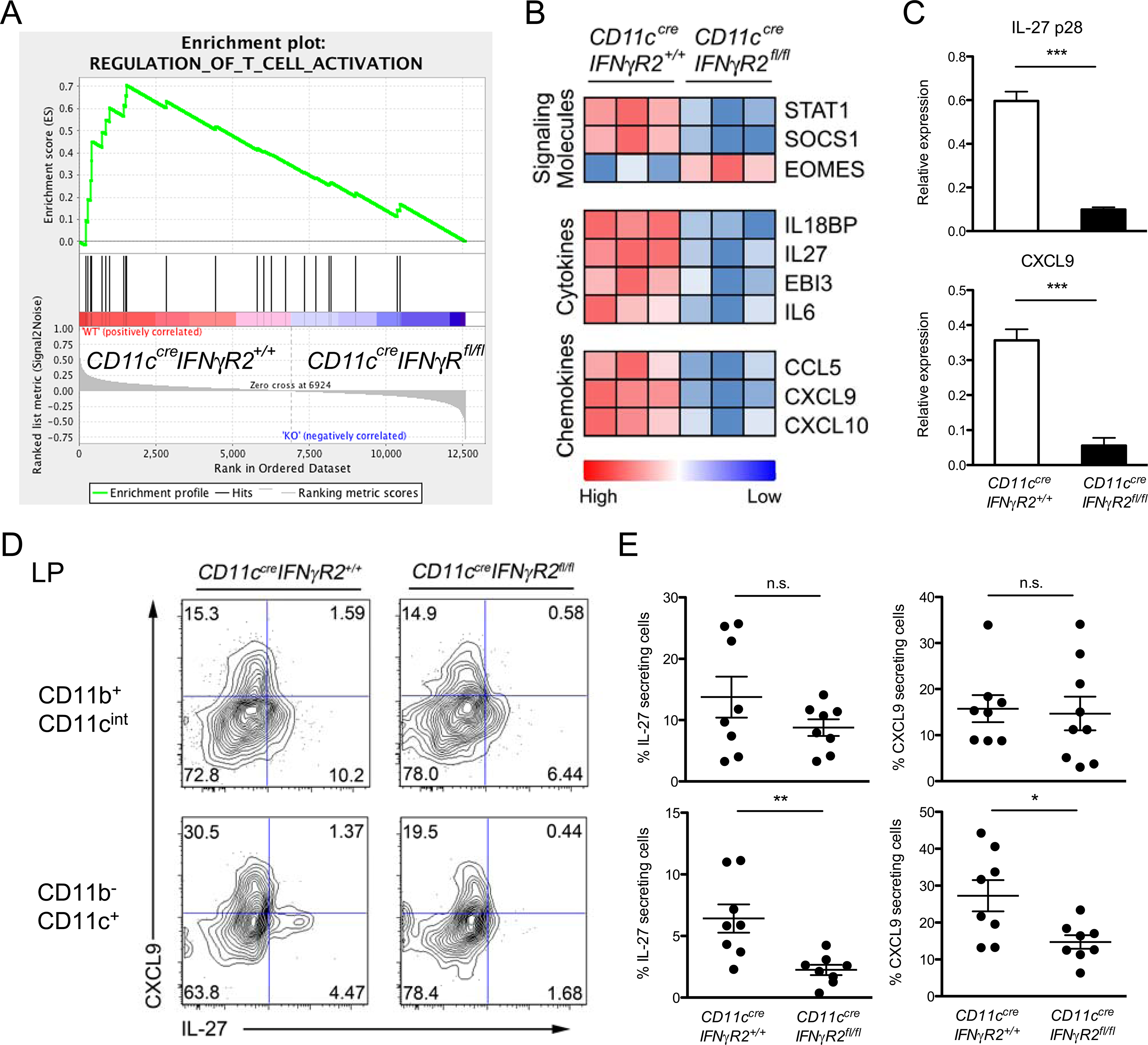 IFNγR2-deficient DCs failed to produce IL-27 as well as other molecules potentially important for Th1-Treg cell differentiation during <i>T</i>. <i>gondii</i> infection.