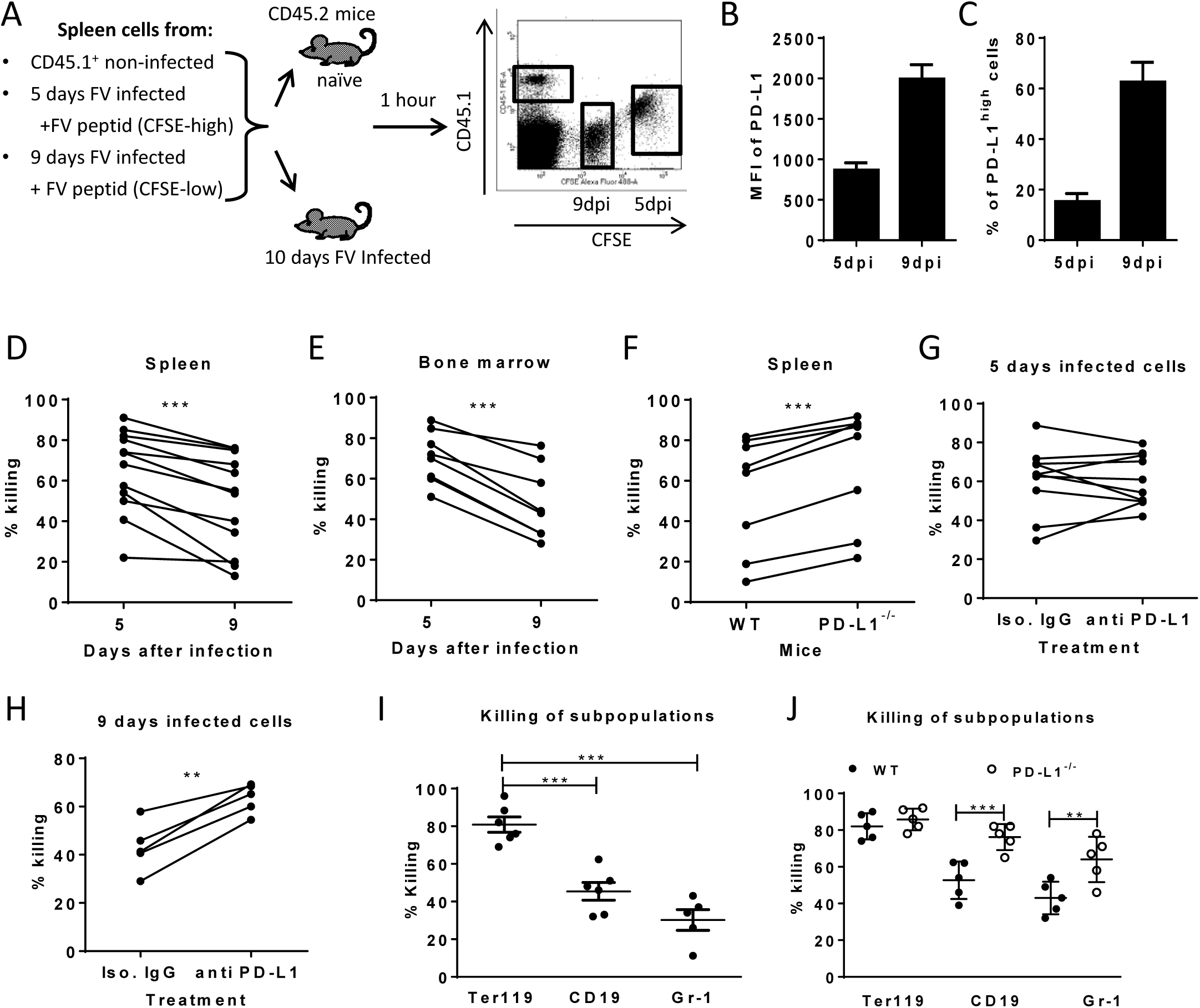 Cytotoxic activity of CTL against target cells expressing different levels of PD-L1.