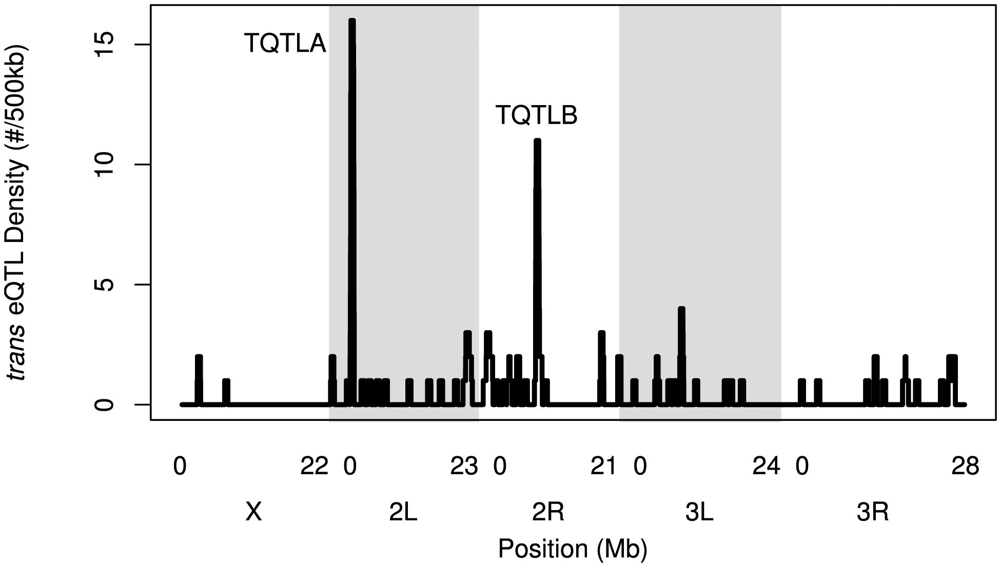 The density of <i>trans</i>-eQTLs along the genome.