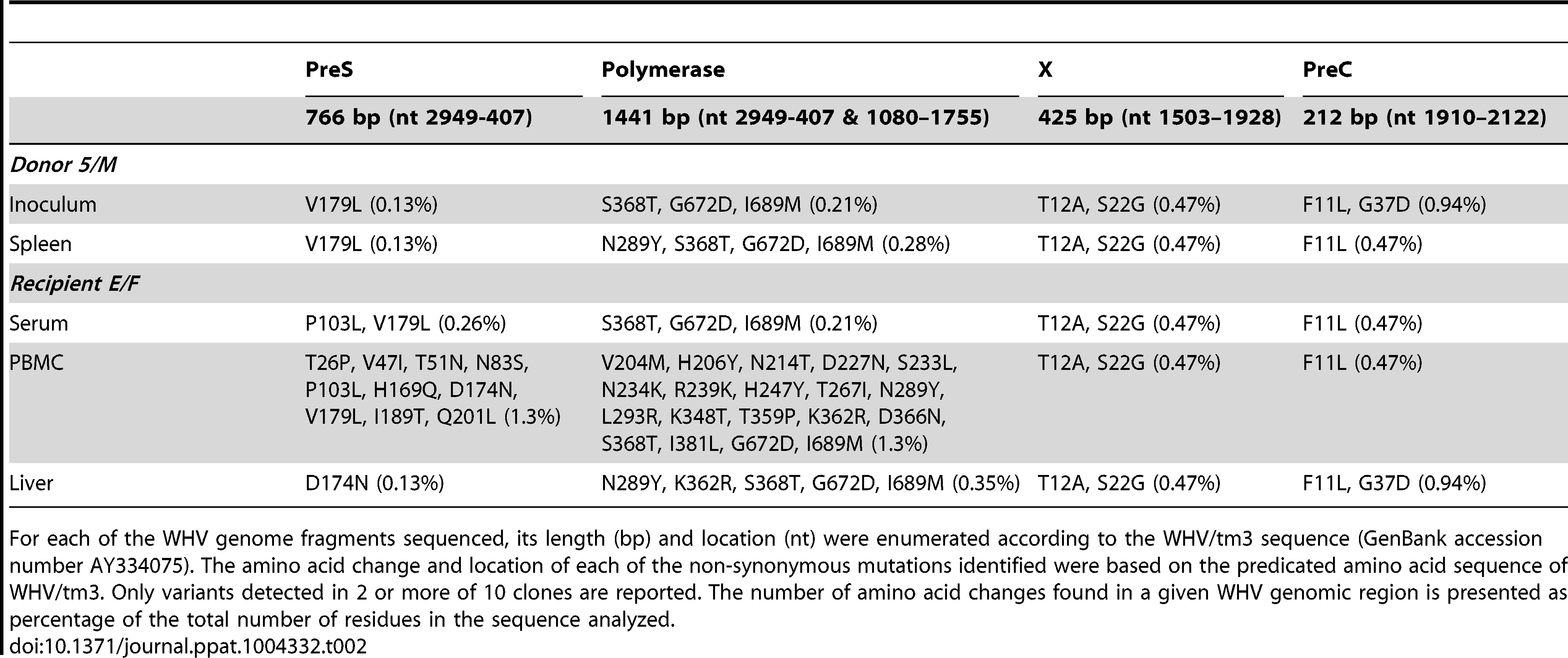 Non-synonymous mutations identified in WHV sequence of the inoculum prepared from the liver WHV-negative phase of POI and in the spleen from 8/M donor and in serum, PBMC and liver of E/F recipient injected with this inoculum.