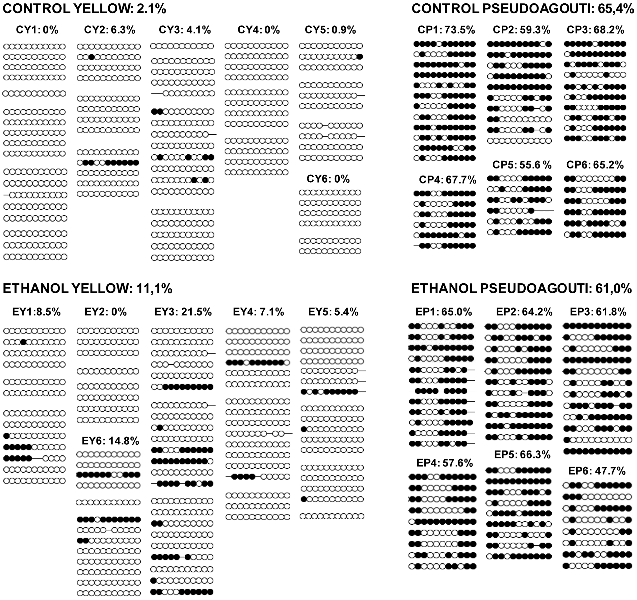 <i>A<sup>vy</sup></i> methylation in control offspring and offspring exposed to ethanol <i>in utero</i>.