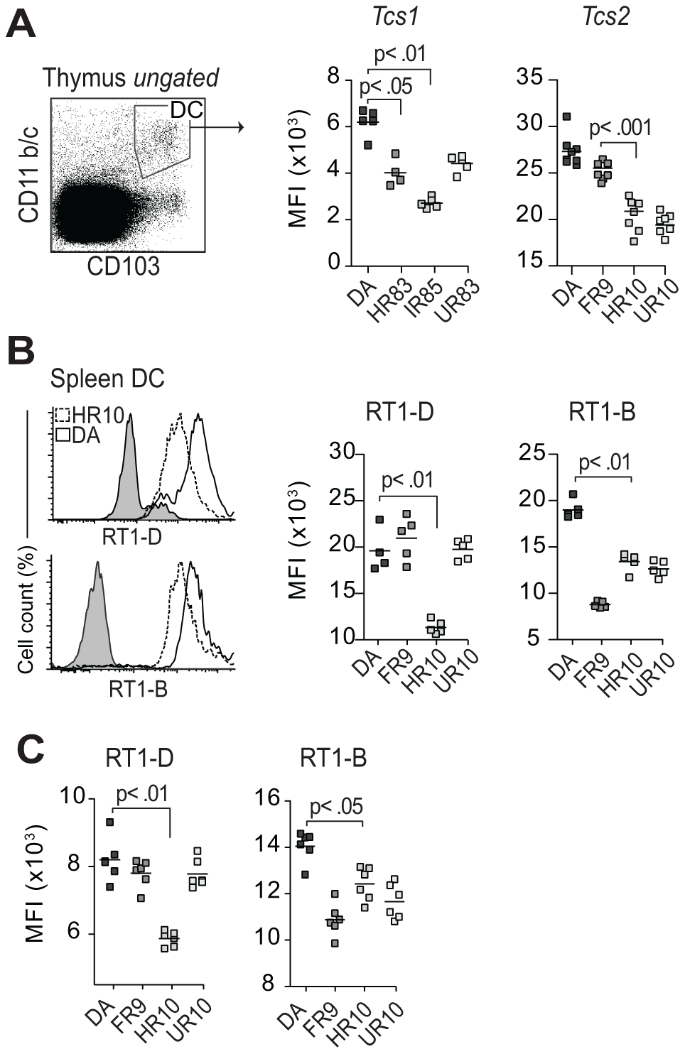 <i>Tcs1</i> and <i>Tcs2</i>-congenic strains show similar variation in extracellular MHC expression in thymus and spleen.