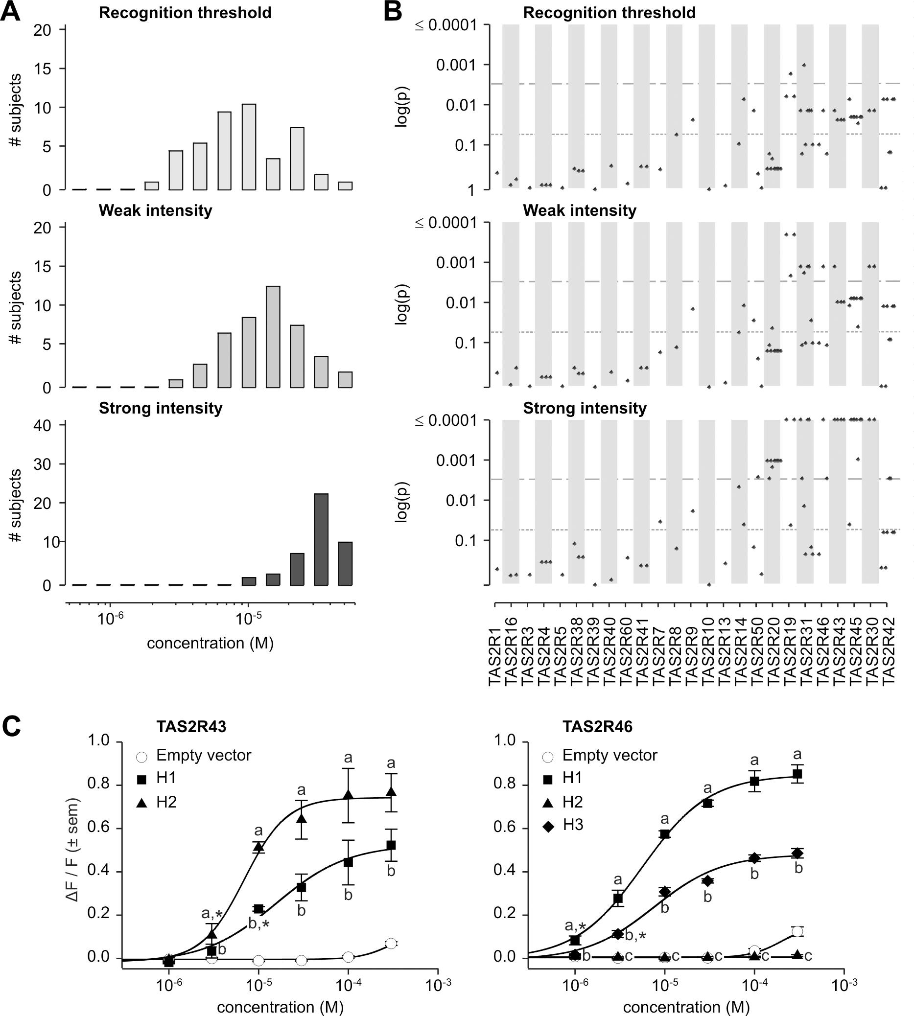 Grosheimin phenotypes, genotype-phenotype associations, and functional assays.
