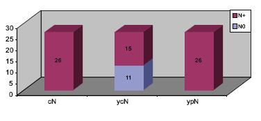 Klasifikace N souboru s histologickou perzistencí metastáz.