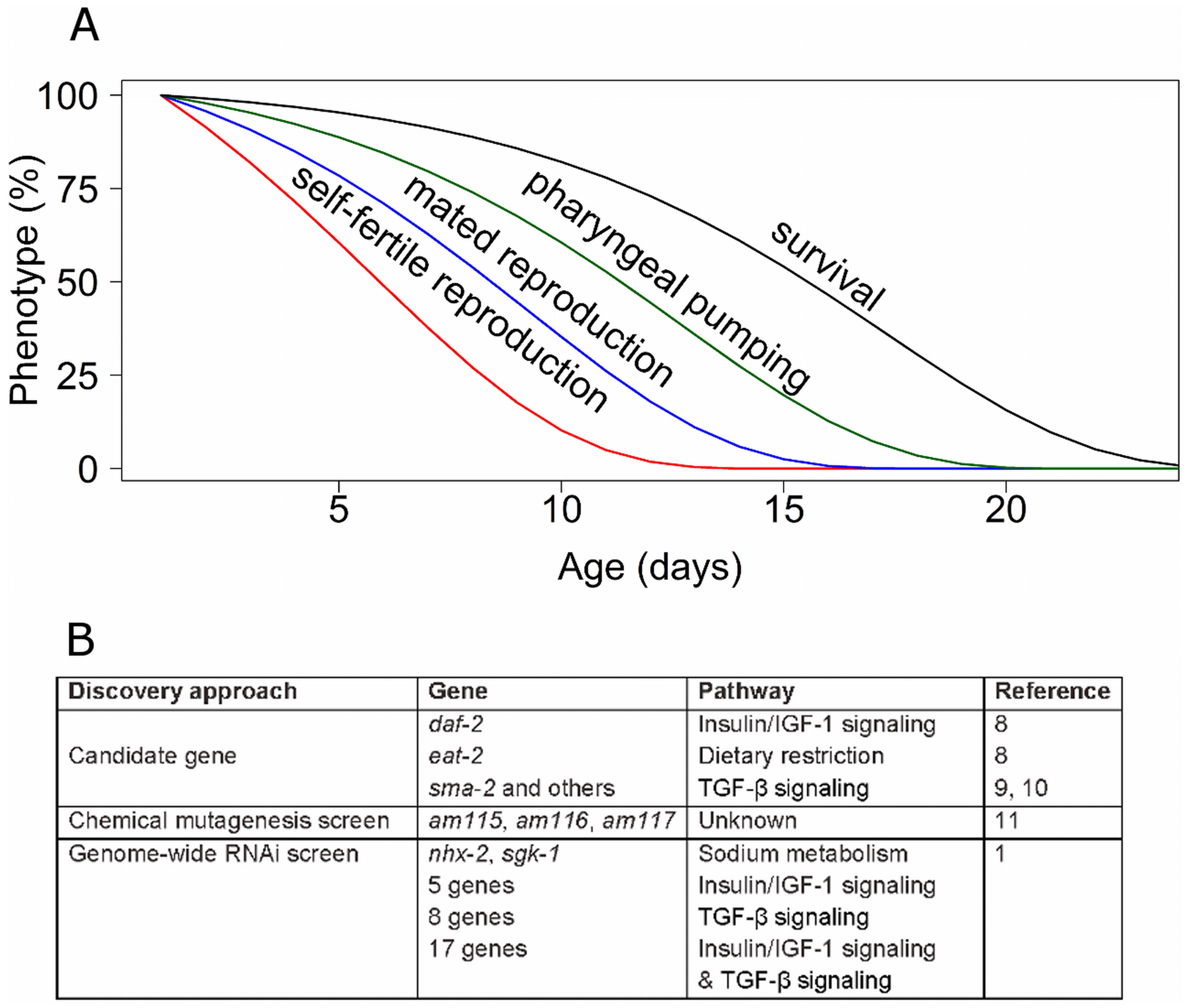 Genetic analysis of reproductive aging in <i>C. elegans</i>.