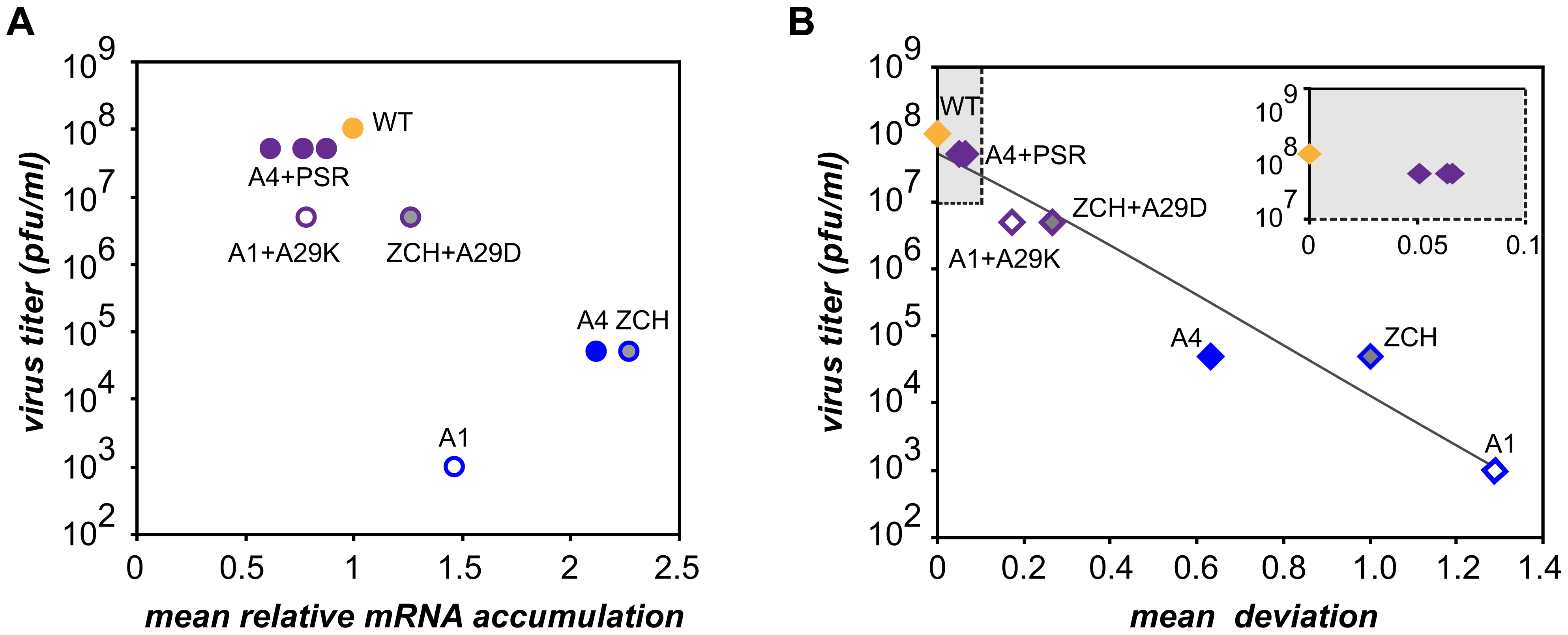 Relationship between viral mRNA accumulation profiles and infectious virus yield.