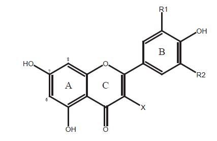 Chemická štruktúra flavonoidov