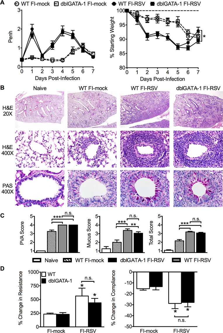 Eosinophils are not required to mediate FI-RSV VED.