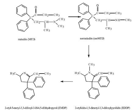 Metabolizmus metadónu 5)