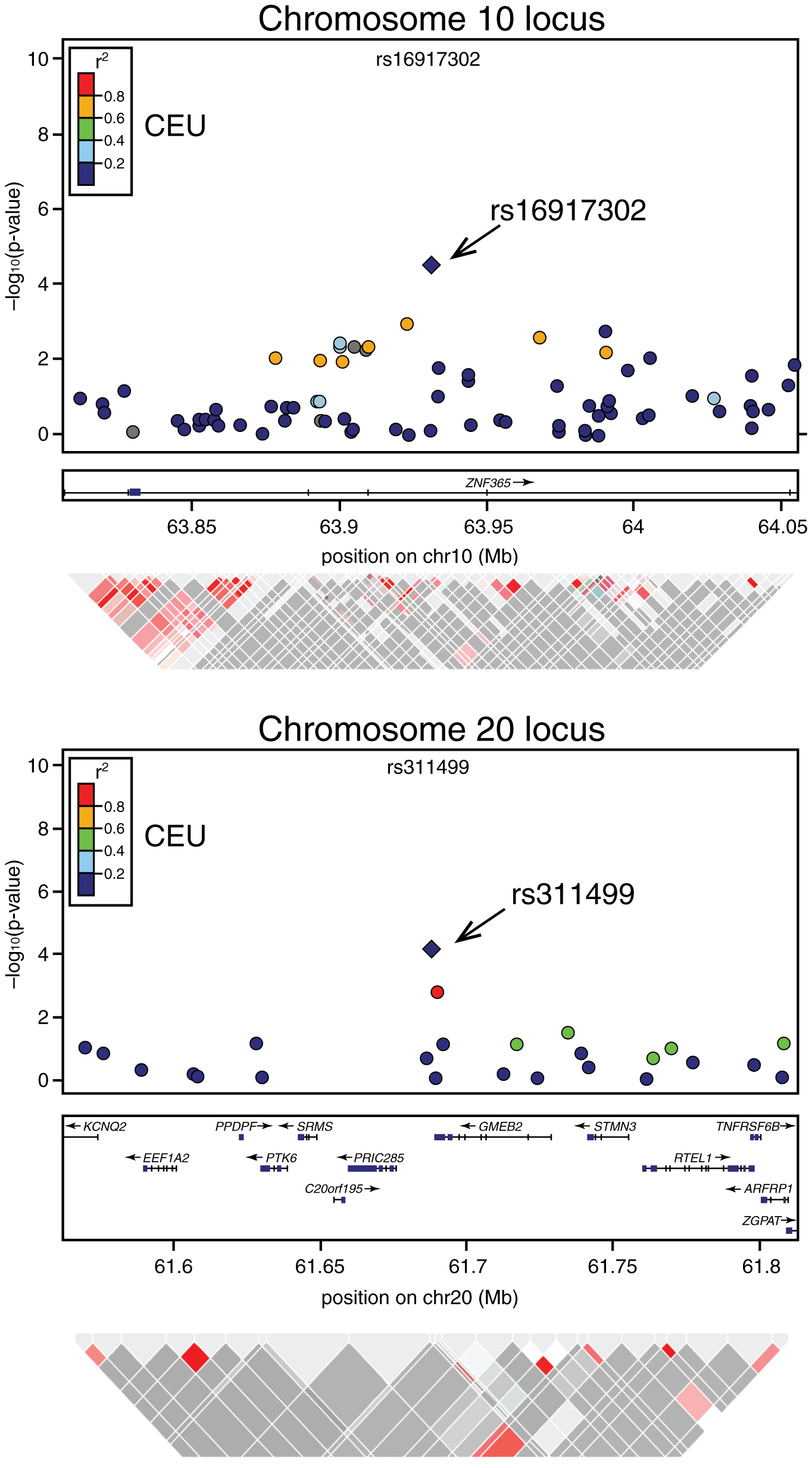 Association signals, genetic structure, and linkage disequilibrium of the novel modifier loci of <i>BRCA2</i> penetrance in the regions surrounding rs1691730 on chromosome 10 and rs311499 on chromosome 20.
