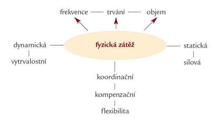 Způsoby fyzické zátěže a jejich frekvence, trvání a objem.