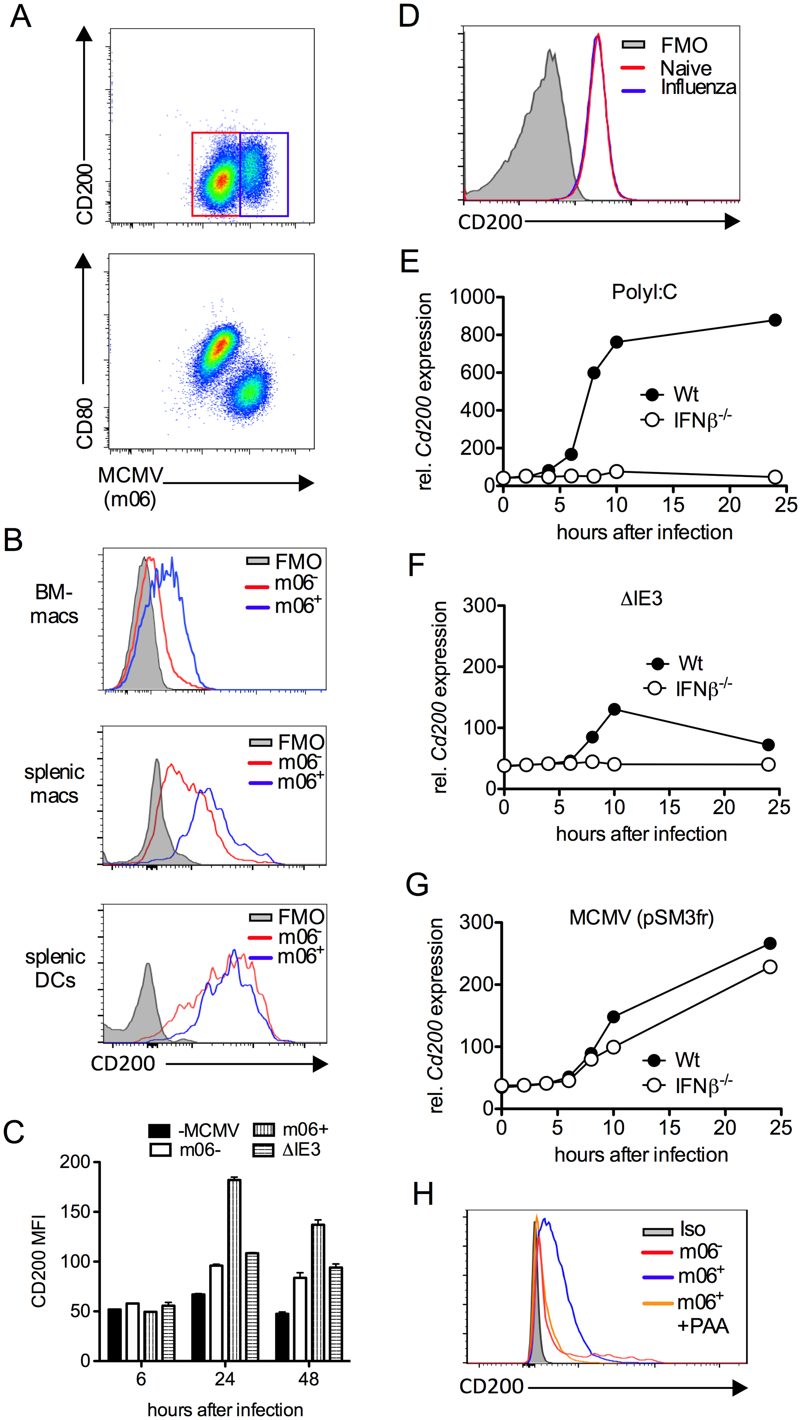 MCMV induces CD200 expression by macrophages.