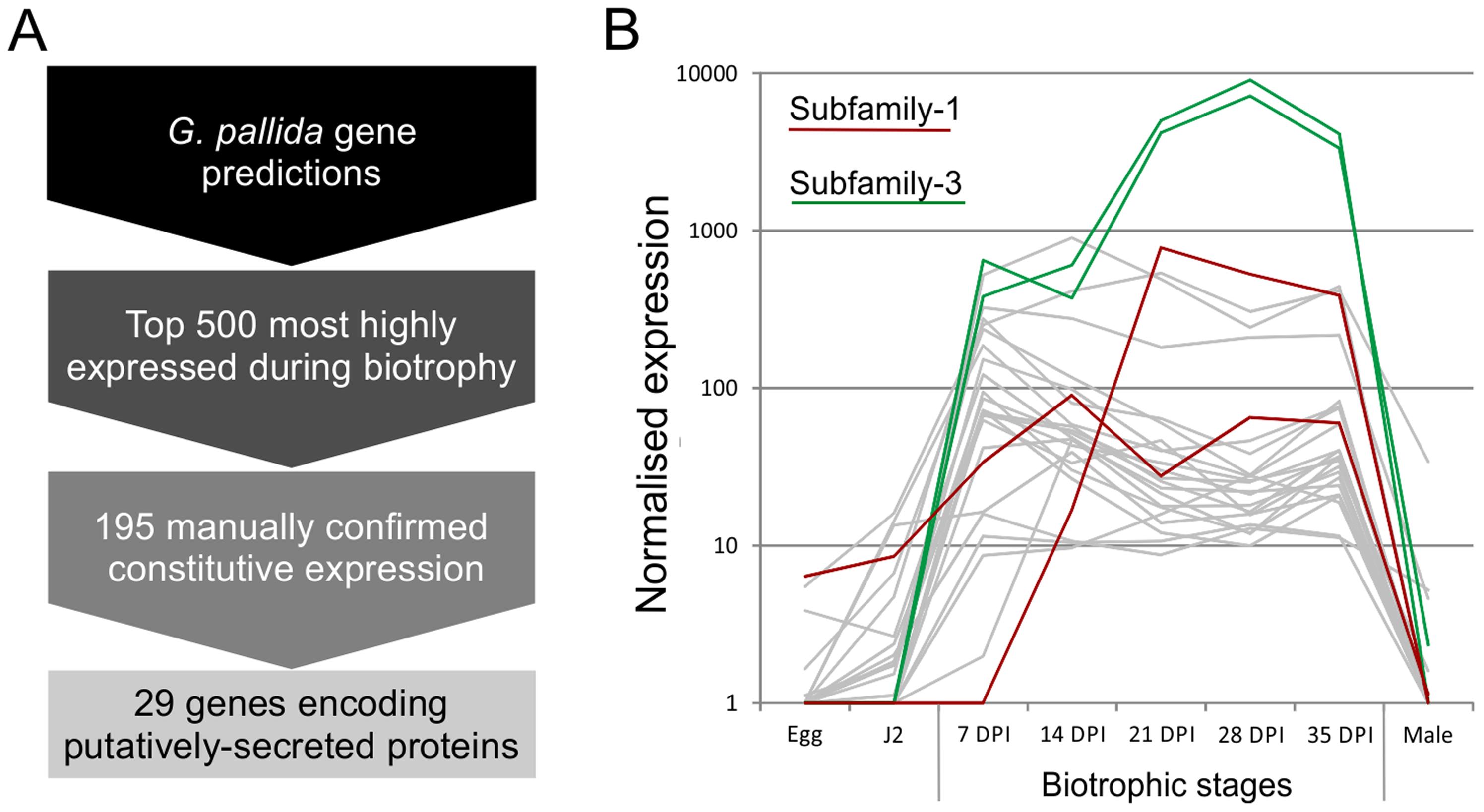 Pipeline for identification of genes involved in plant-nematode biotrophy.