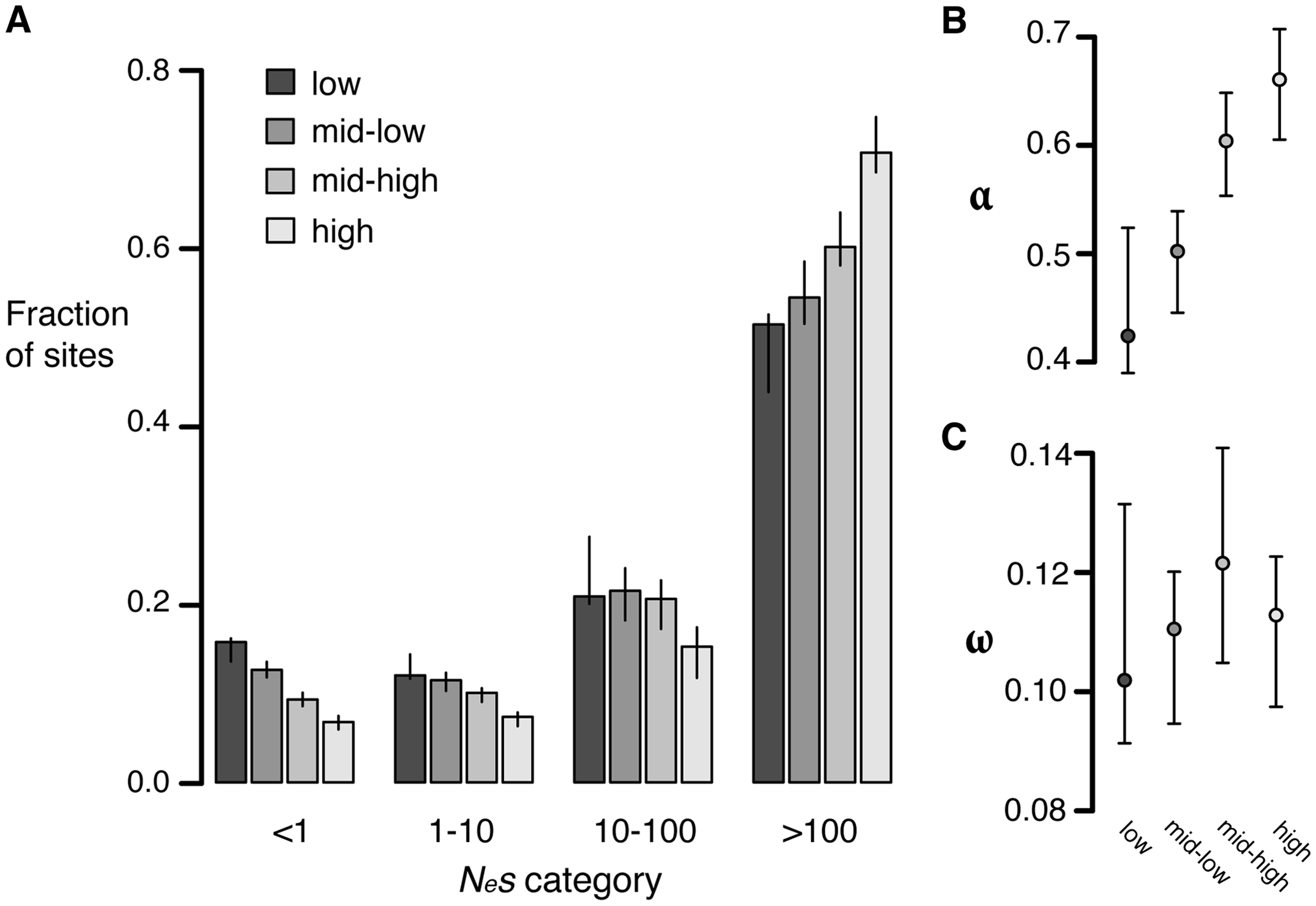 Estimates of negative and positive selection on nonsynonymous sites in genes of varying expression level.
