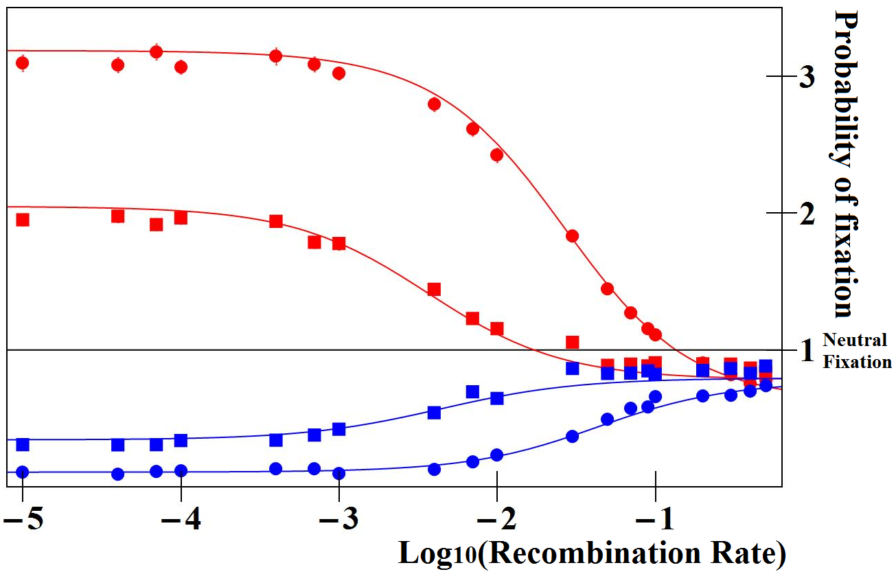 Ratio of fixation probabilities of mutations altering enhancer strength relative to that of a neutral mutation.