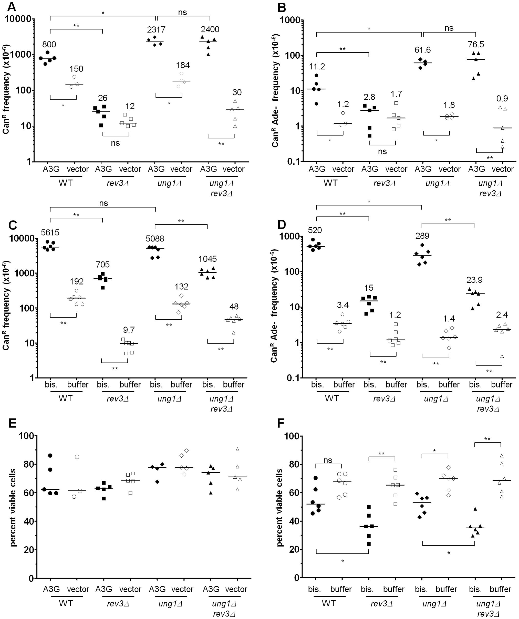 Pol ζ is involved in the majority of error-prone bypass of the 5,6-dihydrouracil-6-sulfonate intermediate of bisulfite-induced cytosine deamination.