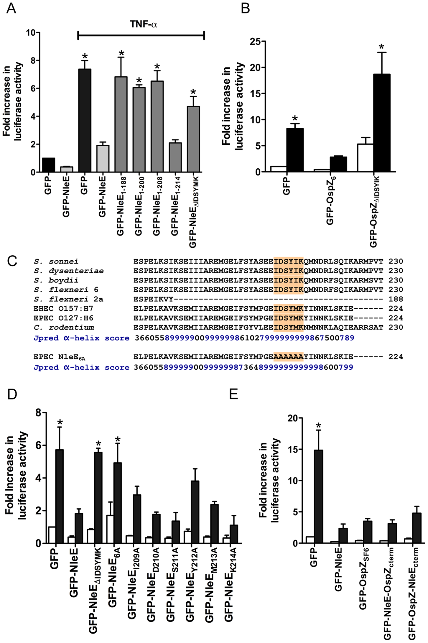 Effect of NleE deletions and mutations on NF-κB activation.