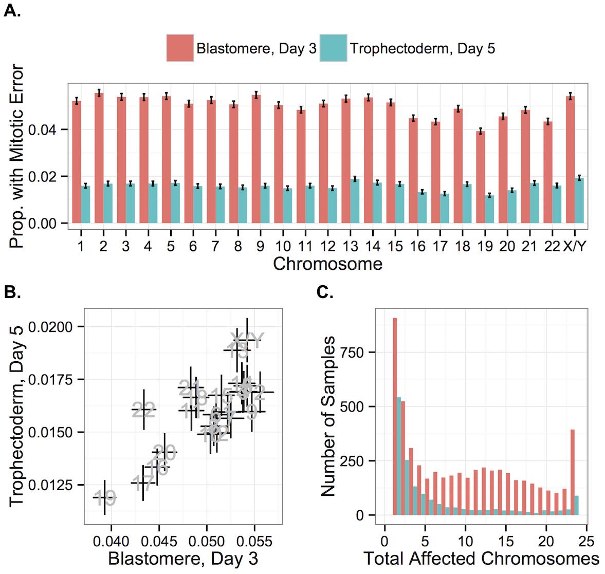 Chromosome-specific rates of aneuploidies of putative mitotic origin.
