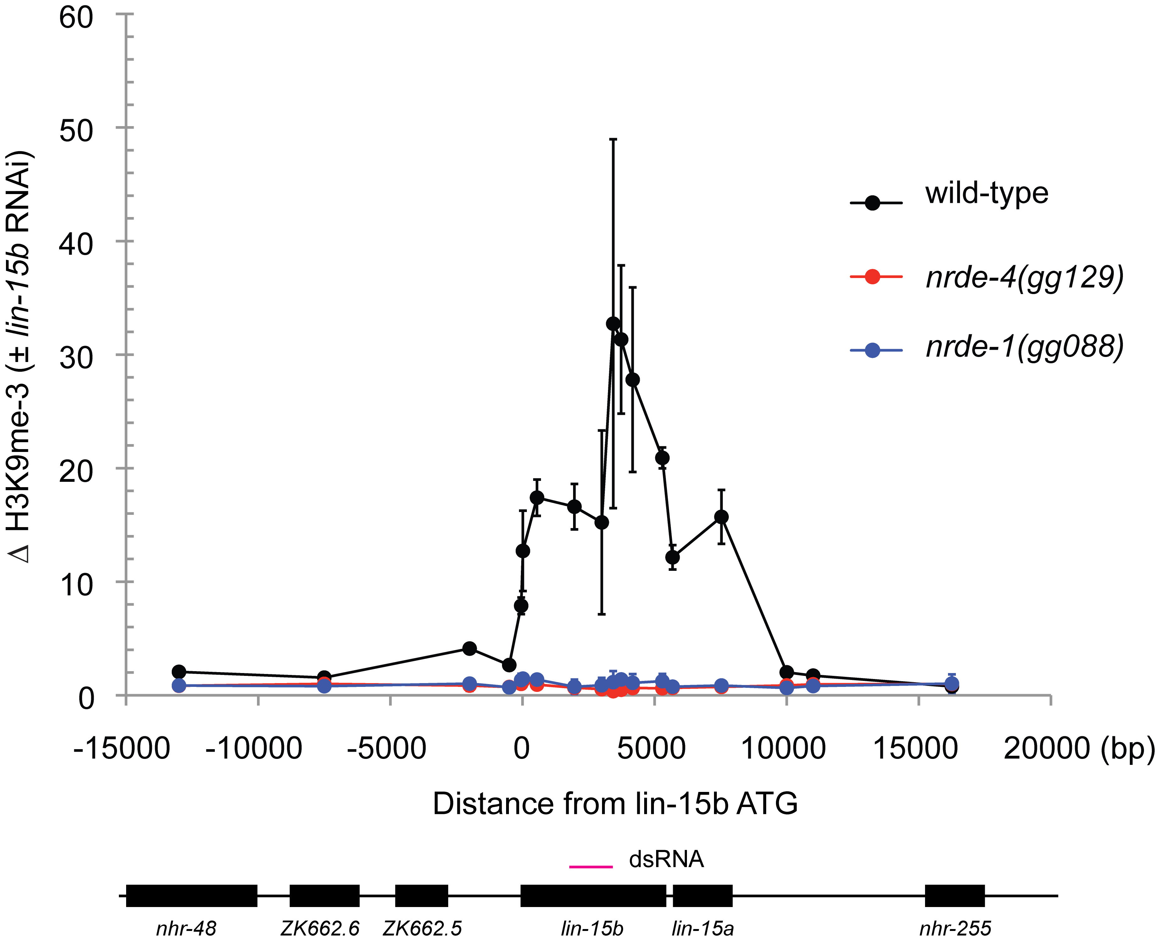 NRDE-1 is required for RNAi-directed H3K9 methylation.