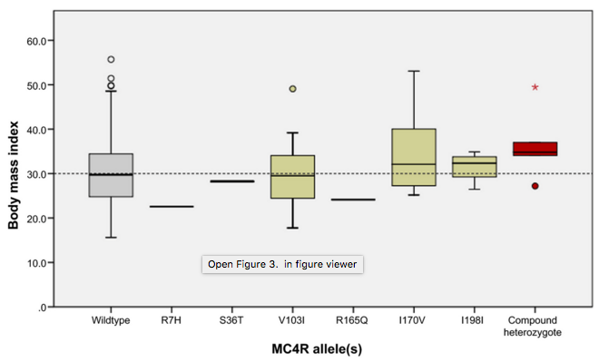 Figure 3.  Body mass index (BMI) distribution of study participants harboring MC4R variants. Wildtype refers to individuals with no SNVs in MC4R; R7H through to I198I represents BMI of individuals heterozygous for these variants; compound heterozygotes refers to individuals harboring I198I and F202L (n = 3), V103I and I170V (n = 1), and V103I and I251L (n = 1). Since BMI data points for compound heterozygotes are represented independently and excluded from the heterozygous data sets, no box-whiskers for individuals harboring F202L and I251L are shown. One individual, who was morbidly obese (BMI = 125.99 kg/m2), was excluded from the V103I data set to avoid skewing of the central tendency. Box-whisker parameters: central tendency = median; upper and lower line of box = interquartile range; whiskers = 1.5 times the inter-quartile range; outliers and extreme outliers are represented by open circles and asterisks, respectively.
