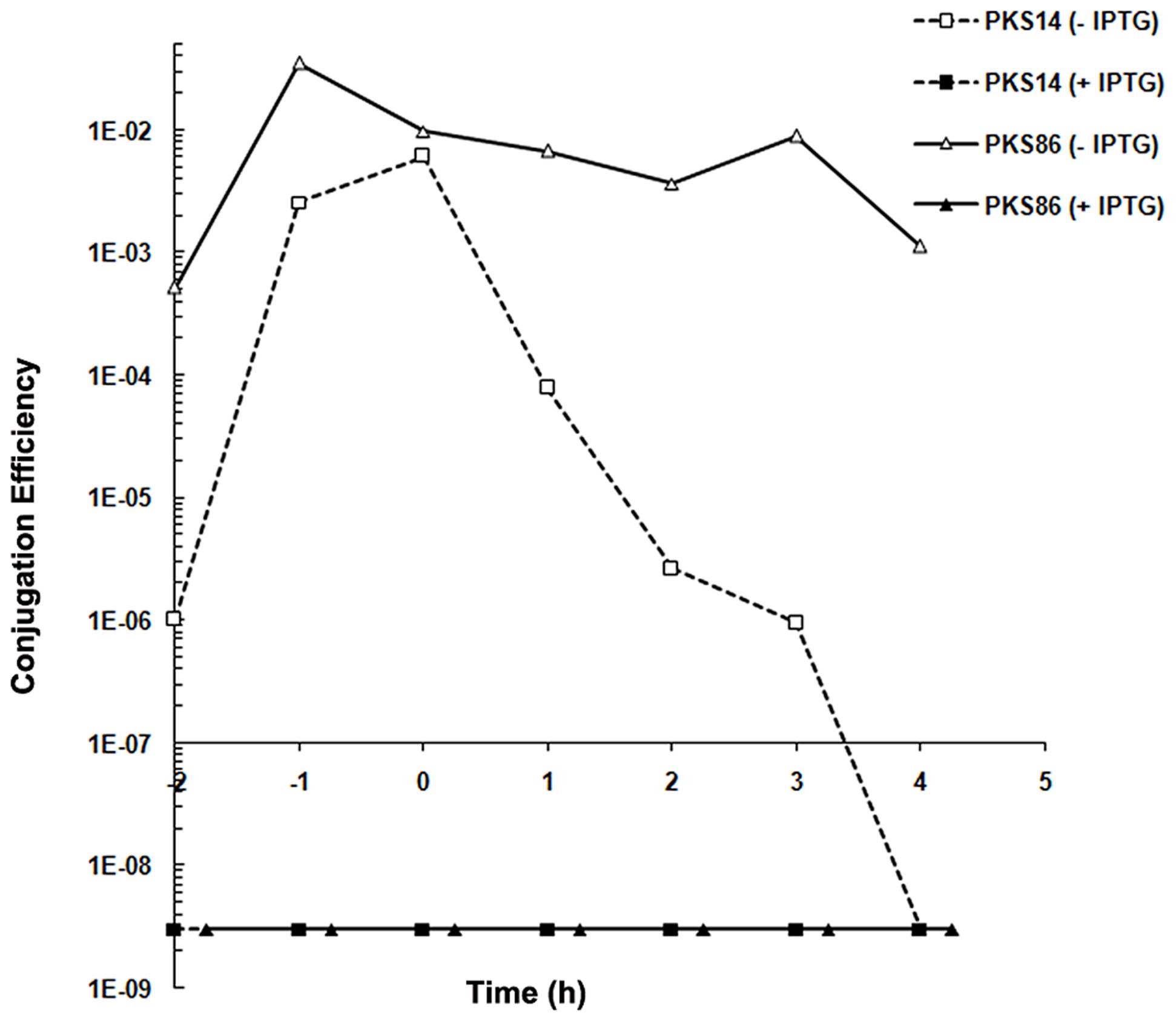 Gene 27c of pLS20cat encodes a repressor of conjugation.