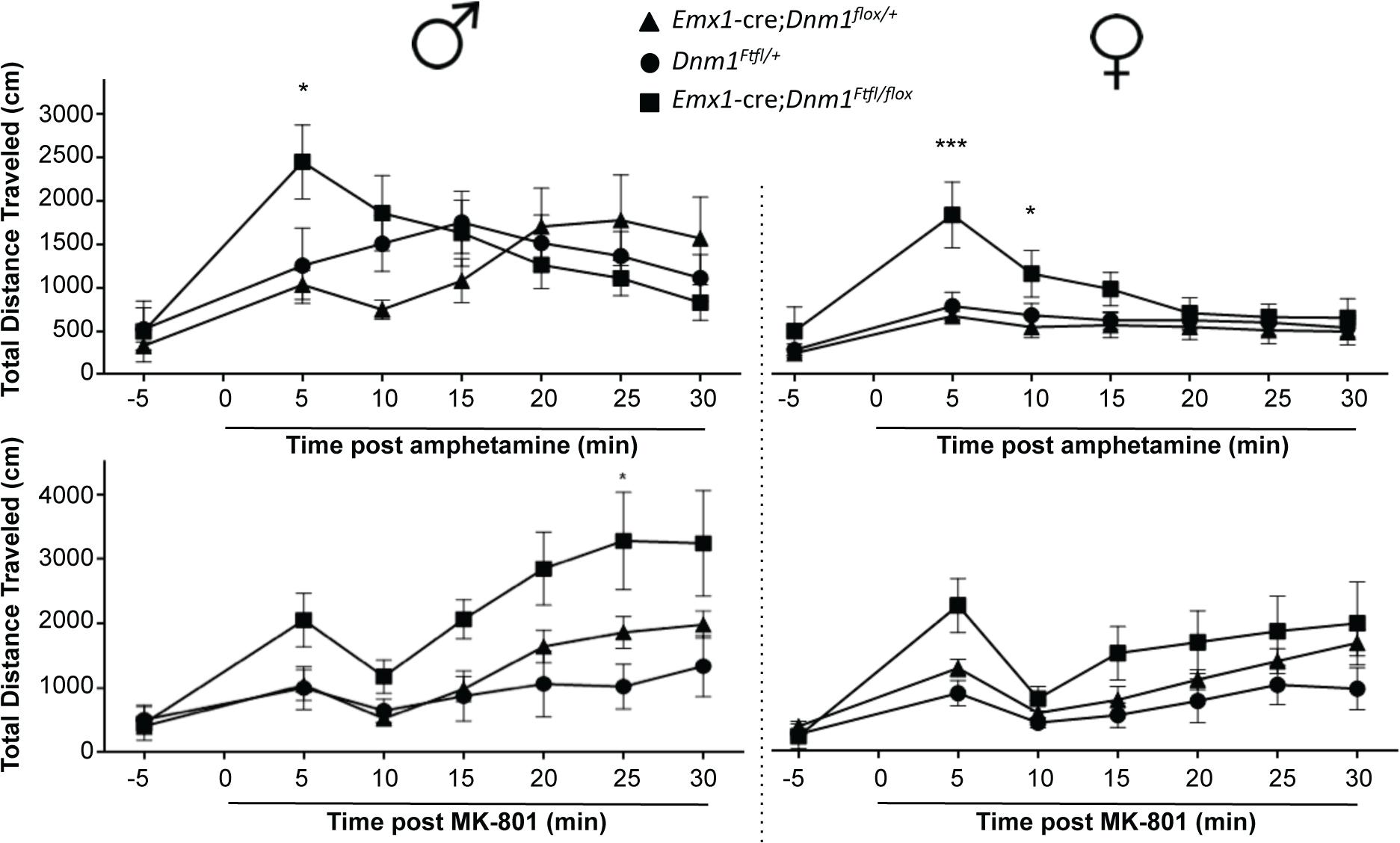 Altered dopaminergic and glutamatergic response.
