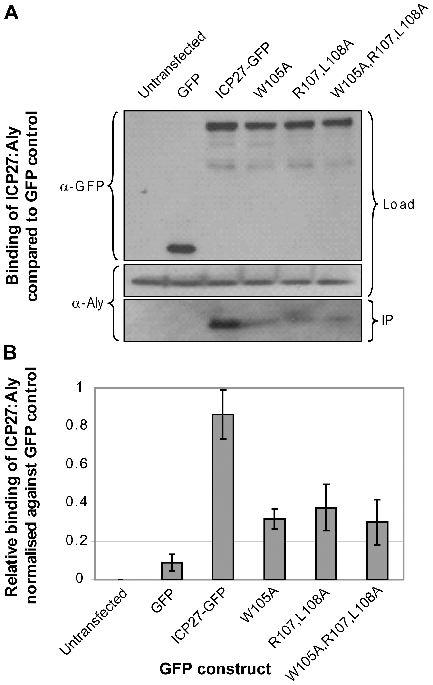 Functional importance of triad residues 105, 107 and 108 for the interaction of ICP27 with human Aly.