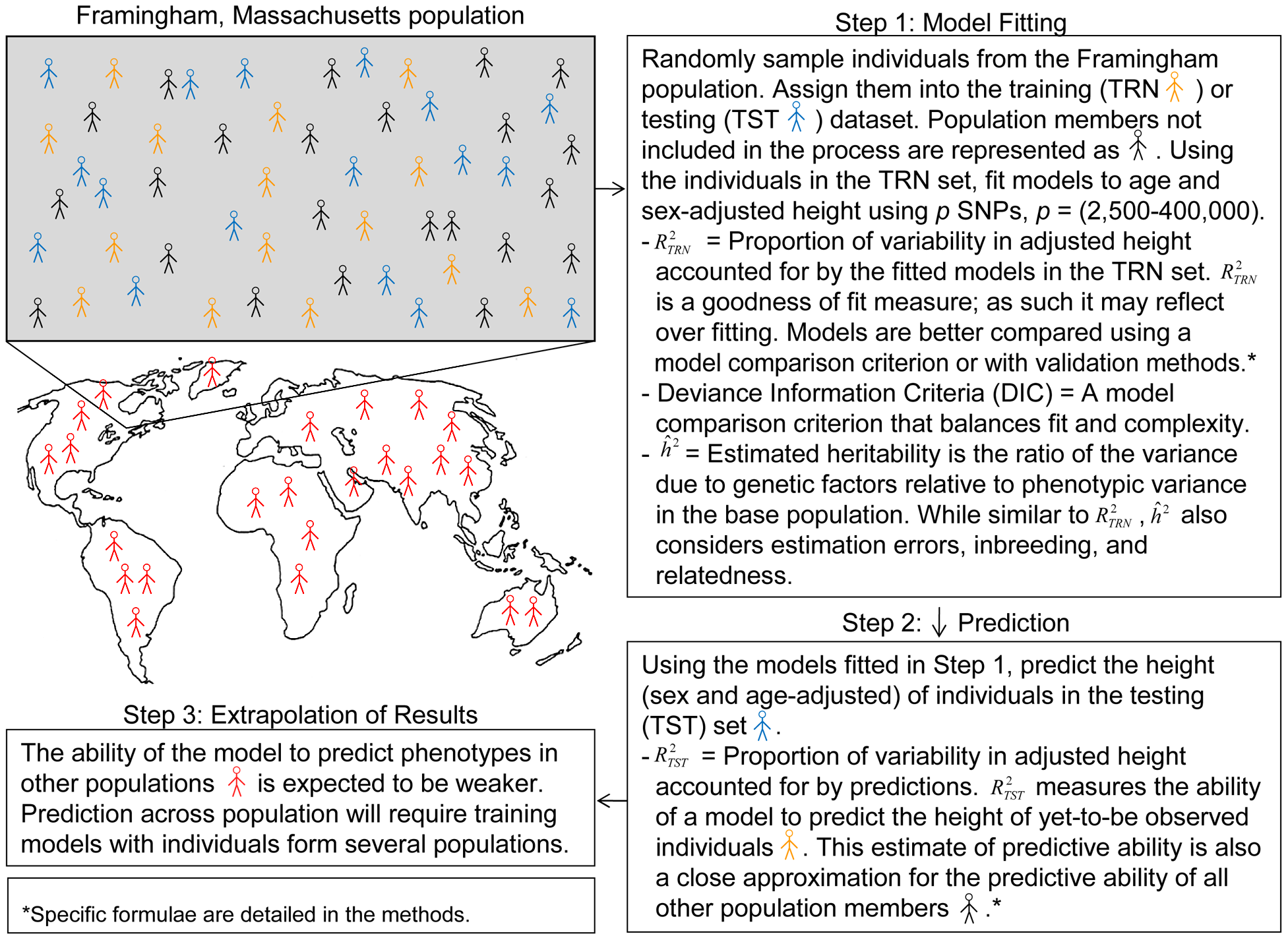 A simplified representation of assessment of goodness of fit in a training dataset and of predictive ability across a population: an example with the Framingham population.