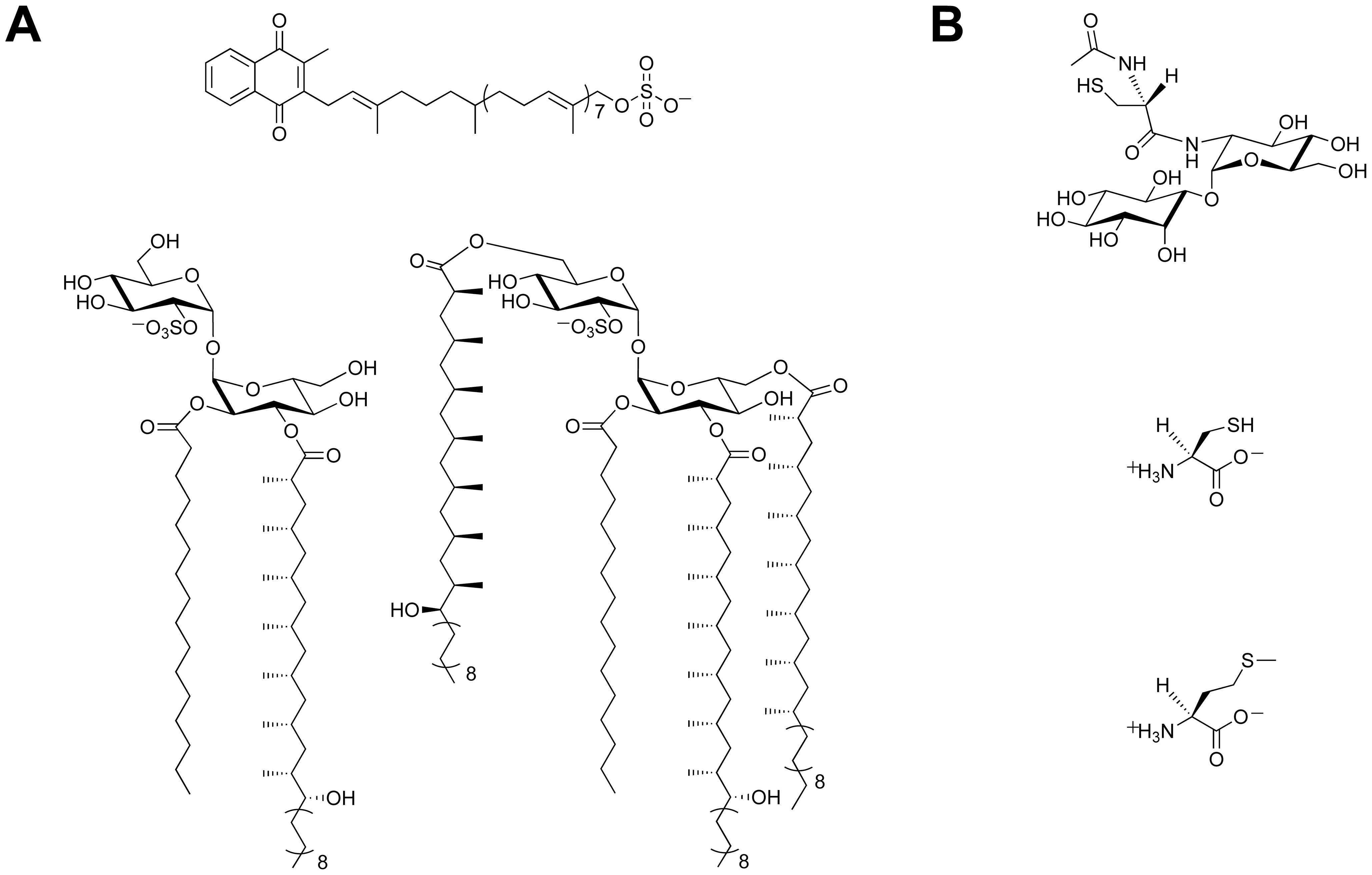 Sulfur-containing metabolites from <i>Mtb</i>.