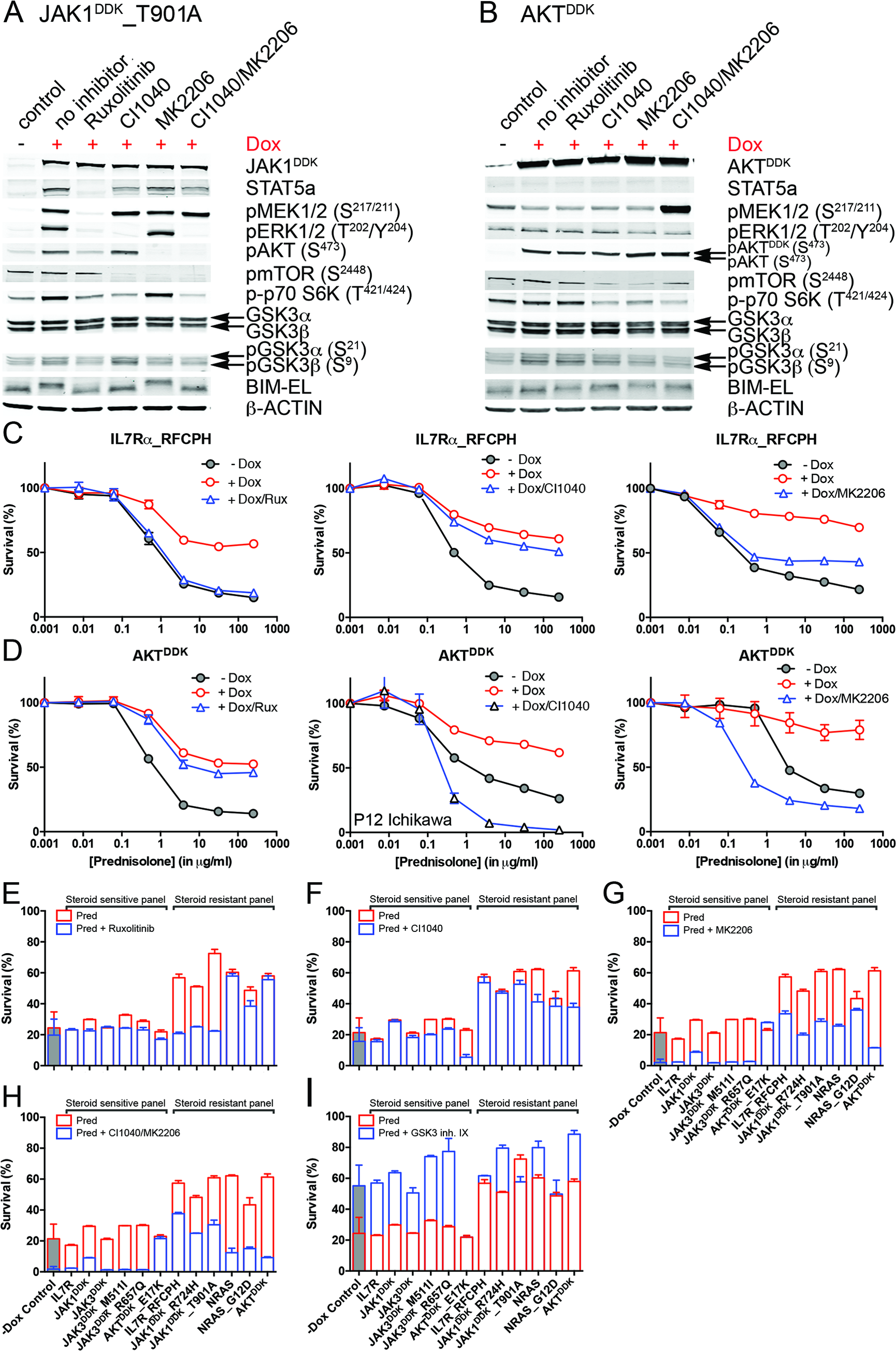 Reversal of steroid resistance by IL7R signaling inhibitors.
