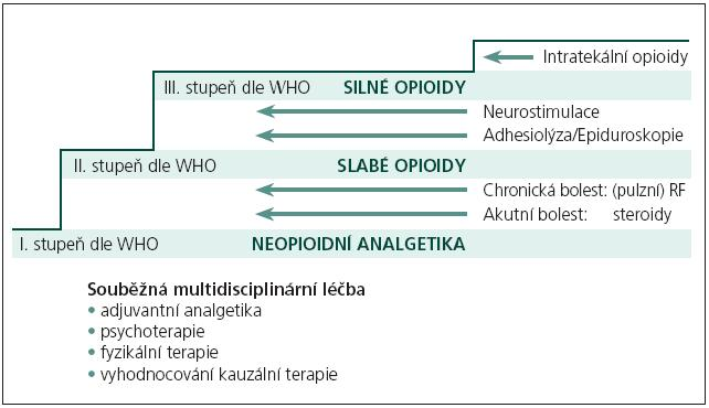 Zařazení radiofrekvenční léčby do schématu terapie bolesti. Volně podle van Zundert et al [3].