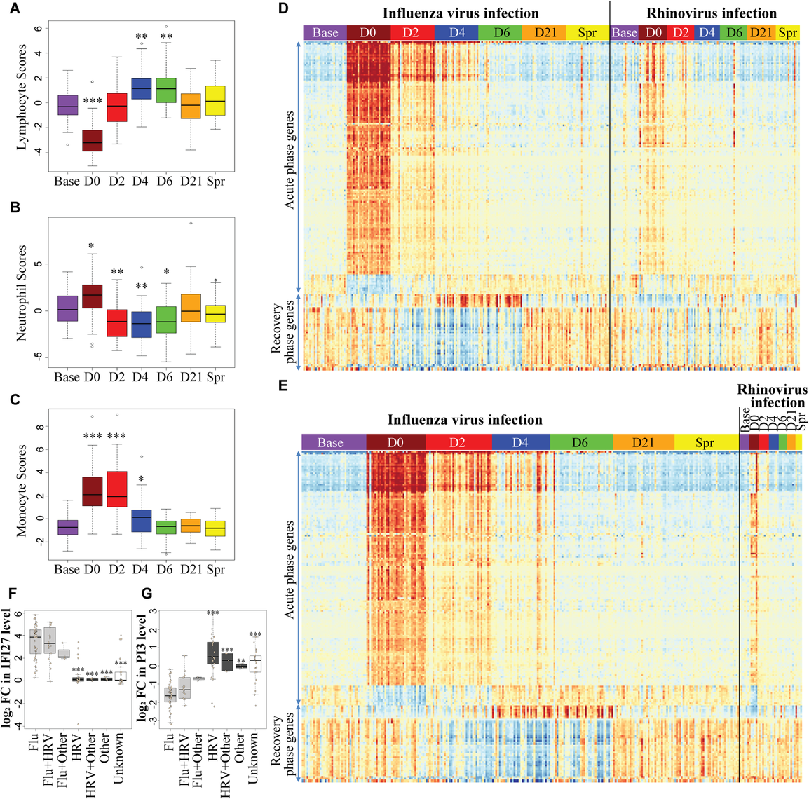 A robust and dynamic host transcriptional response to influenza virus infection.