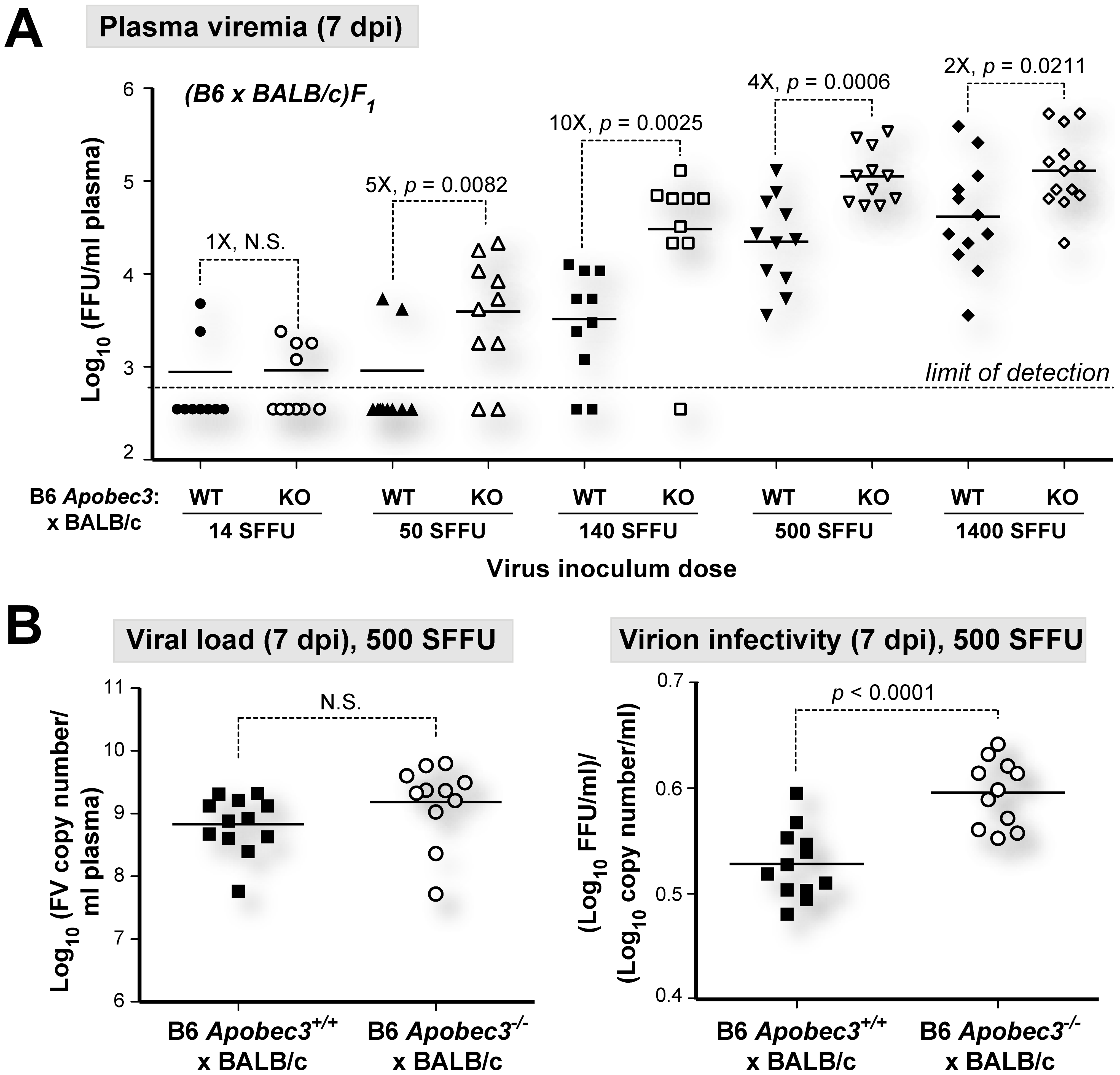 B6 <i>mA3</i> is a saturable innate restriction factor <i>in vivo</i>.