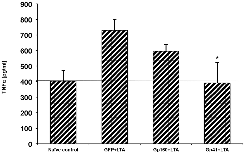 HIV1-ENV intact protein inhibits LTA mediated TNFα secretion.