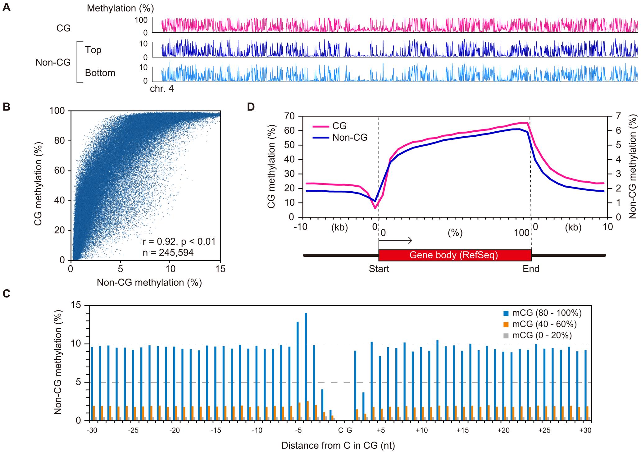 Relationship between CG methylation and non-CG methylation in GVOs.
