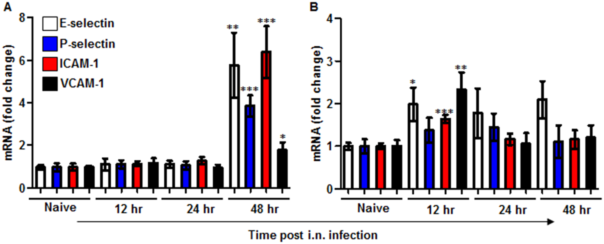 Expression of adhesion molecules in the lungs of mice infected i.n. with <i>Y</i>. <i>pestis</i> strains.