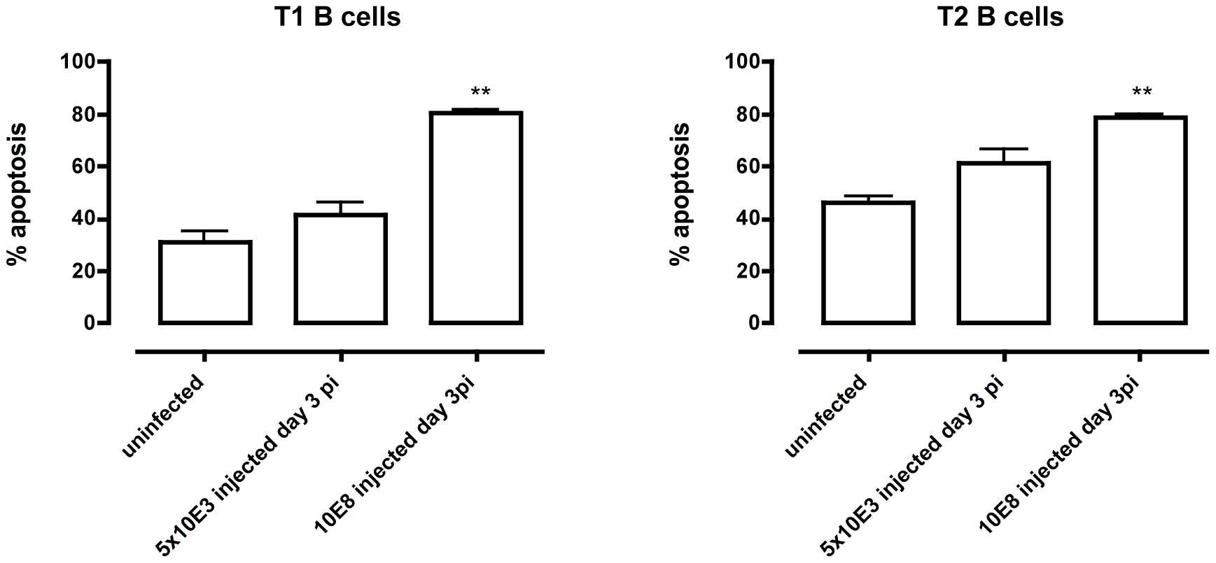 Apoptosis of transitional B cells <i>in vivo.</i>
