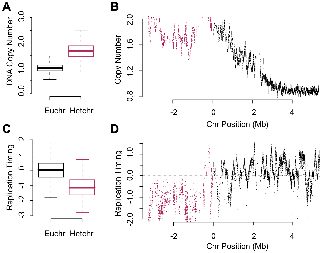 Re-replication is dependent on chromatin environment not time of replication.