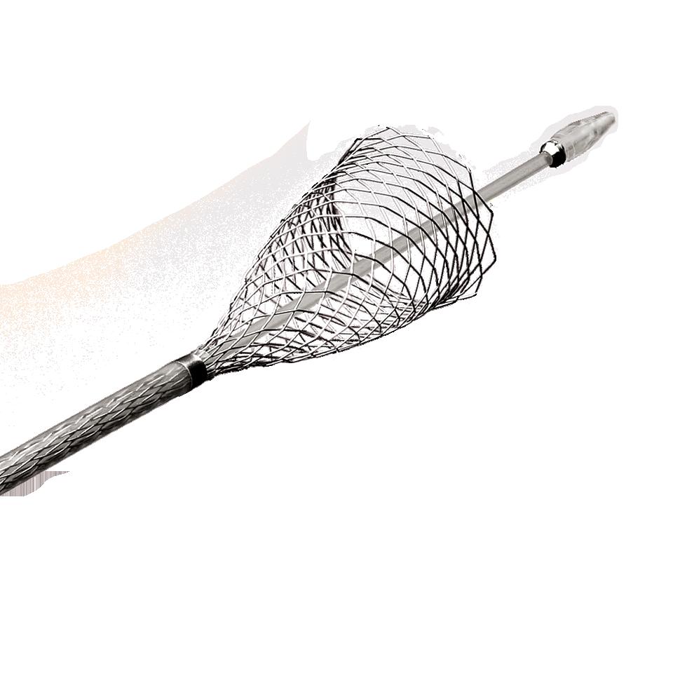 "Typ karotického stentu s ""uzavřenými"" buňkami (Wallstent, Boston Scientific)"