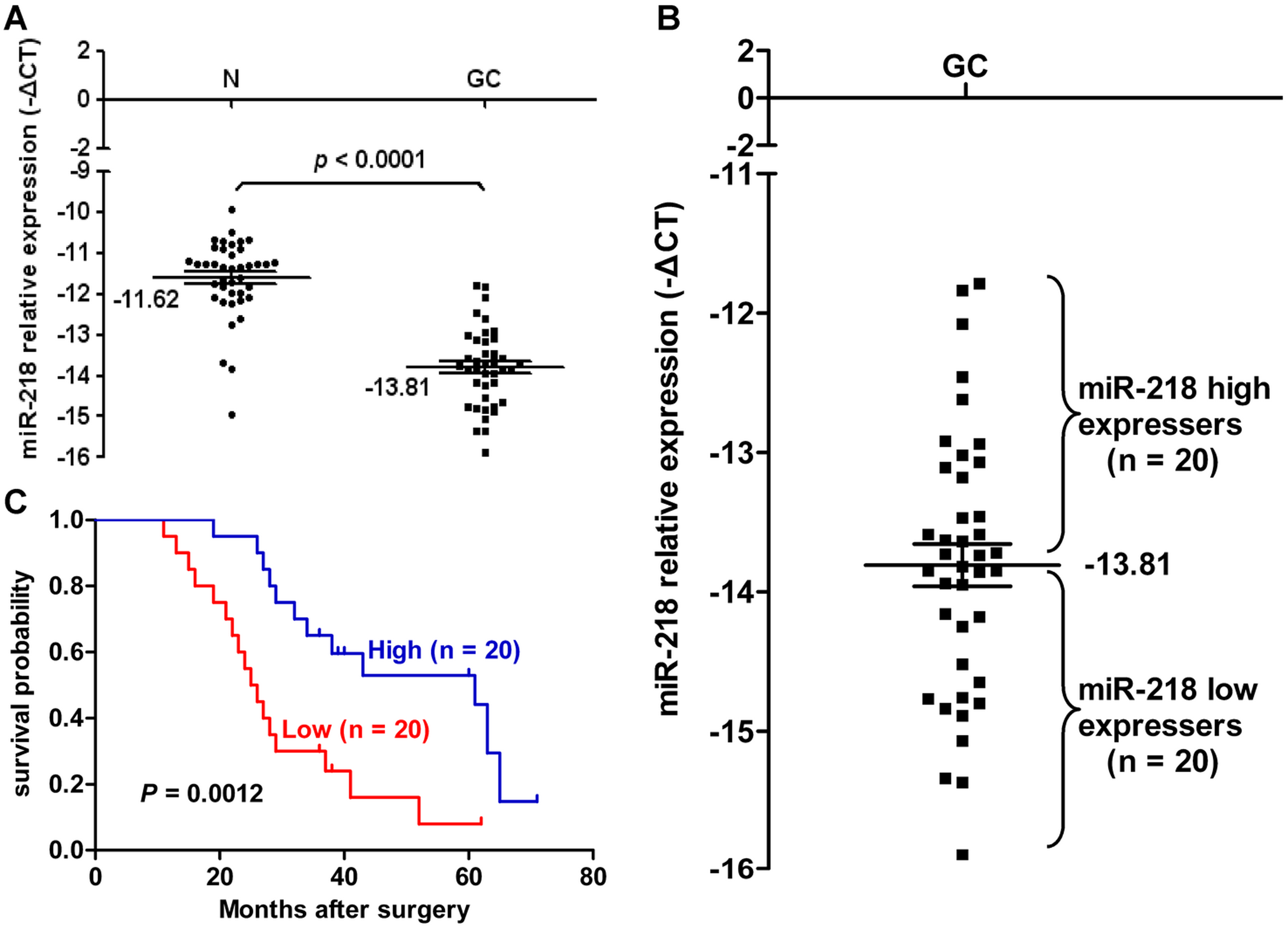miR-218 expression in clinical GC specimens.
