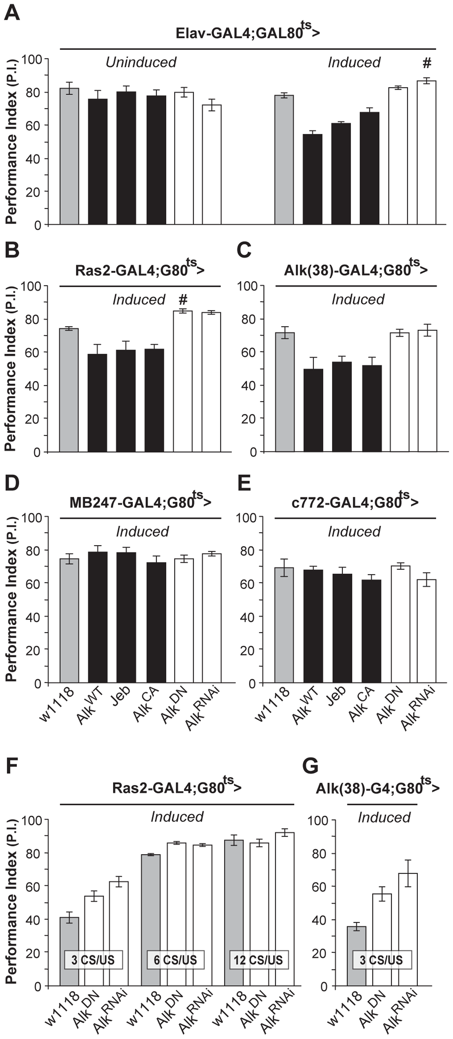 dAlk activity in adult neurons negatively regulates olfactory learning.