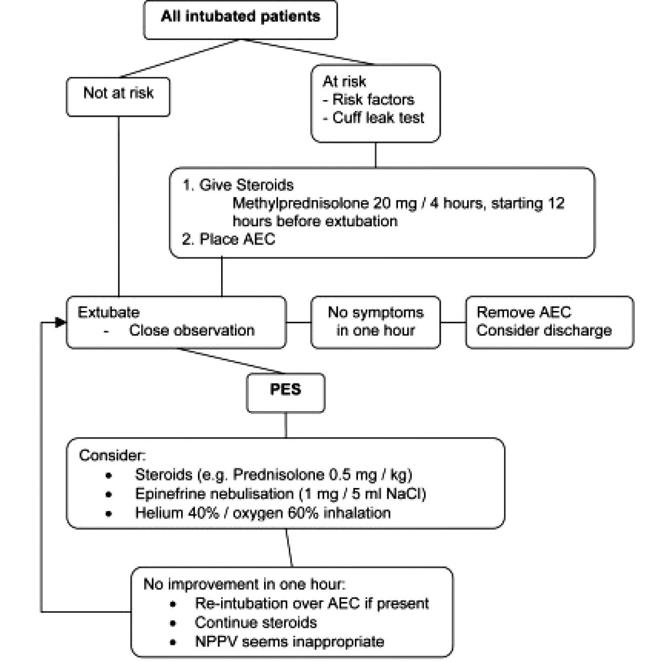 Schéma prevence a terapie postextubačního stridoru [10]