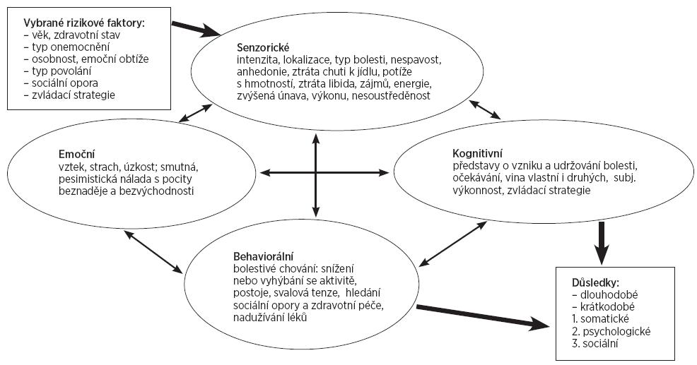 Systémové propojení modalit u chronické bolesti (26).