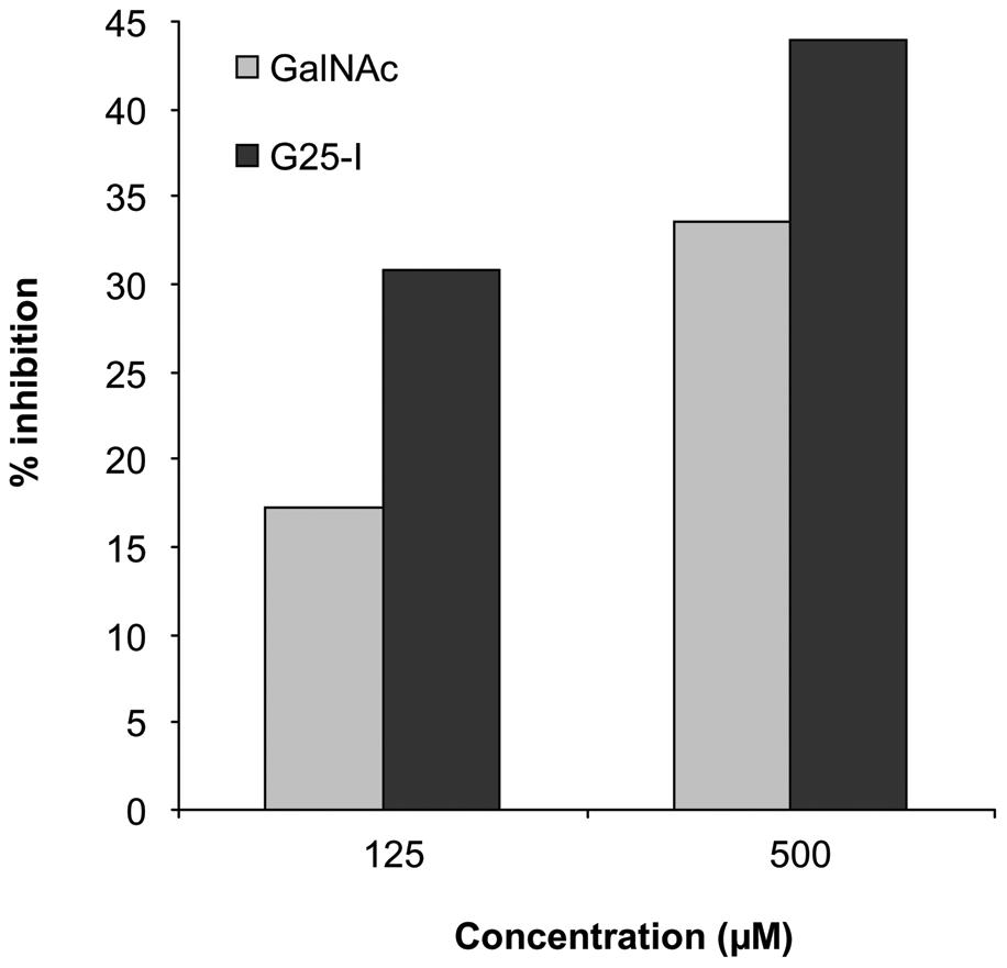 Binding of macrophage galactose-type lectin (MGL) to the galactosaminogalactan of <i>A. fumigatus</i>.