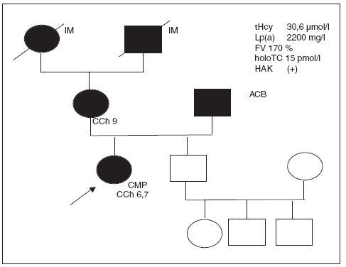 Rodokmen rodiny 27leté pacientky homozygotky MTHFR 677 dlouhodobě užívající KHA, která prodělala cévnímozkovou příhodu s trvalými následky.
