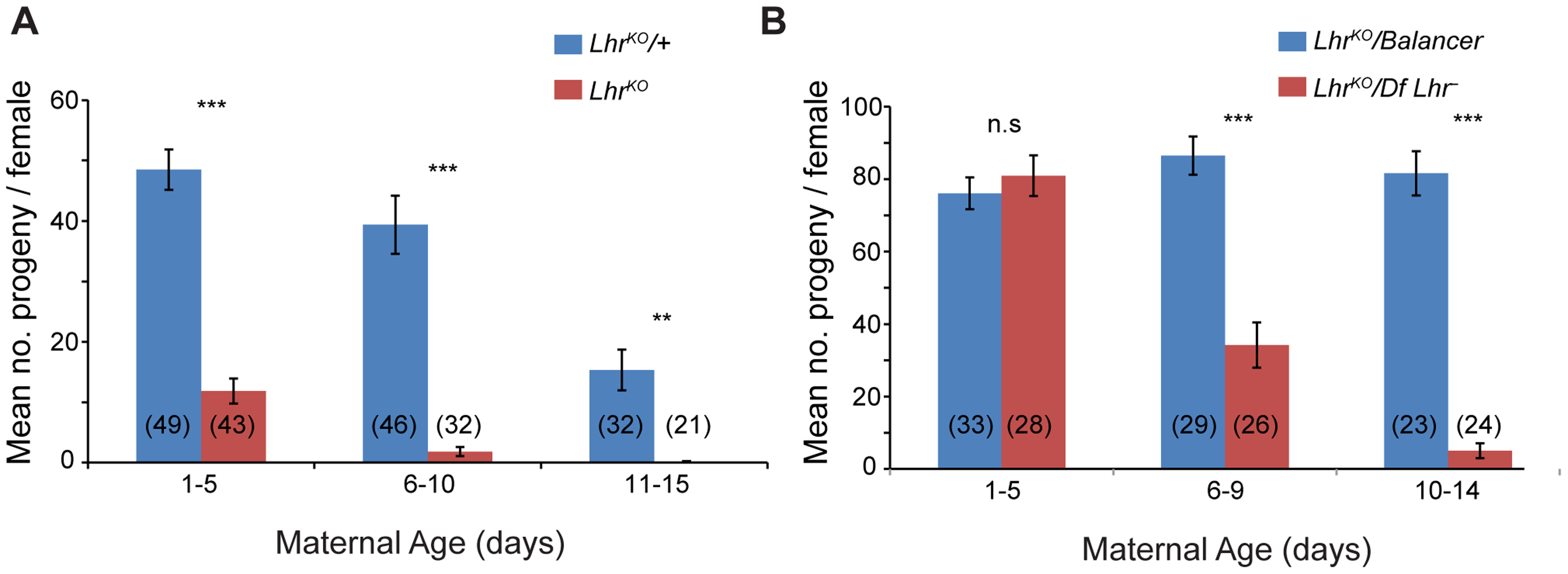 <i>Lhr</i> mutant females have reduced fertility.
