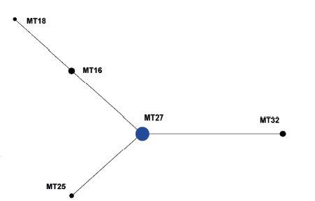 Diagram eBURST, MLVA analýza kmenů <i>B. pertussis,</i> ČR, 2008–2015 (červen) Figure 4. eBURST diagram, MLVA analysis of <i>B. pertussis</i> strain collection, Czech Republic, 2008–2015 (June)