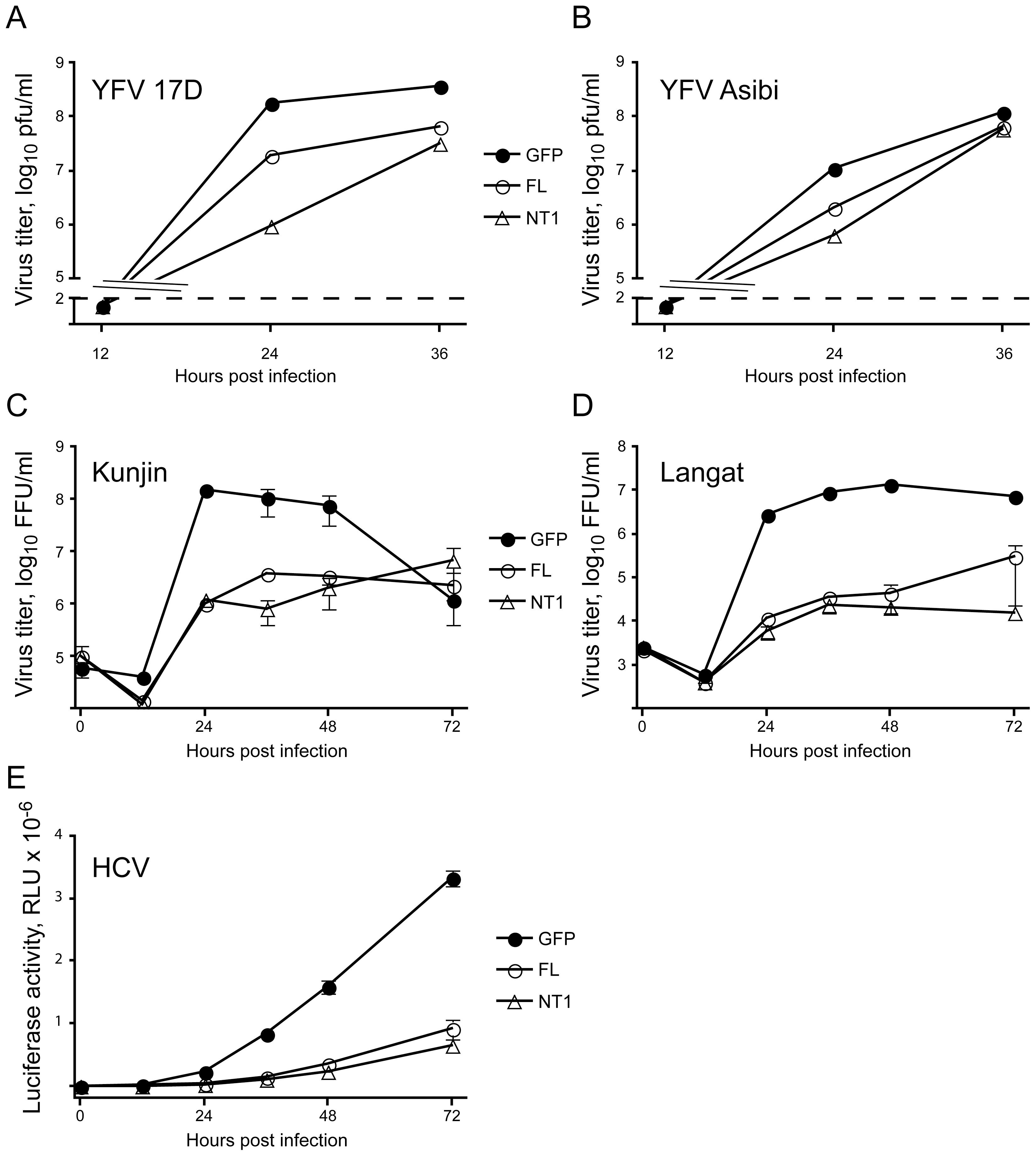 DNAJC14 inhibits multiple members of the <i>Flaviviridae</i> family.