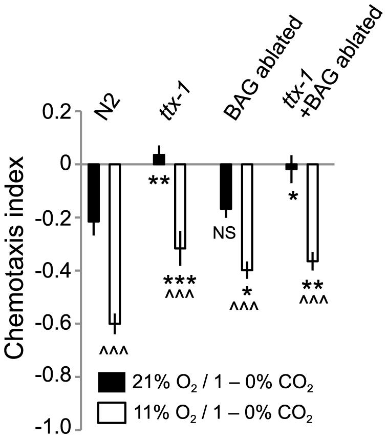 Ambient O<sub>2</sub> can modulate CO<sub>2</sub> avoidance in animals lacking BAG and AFD CO<sub>2</sub> sensors.