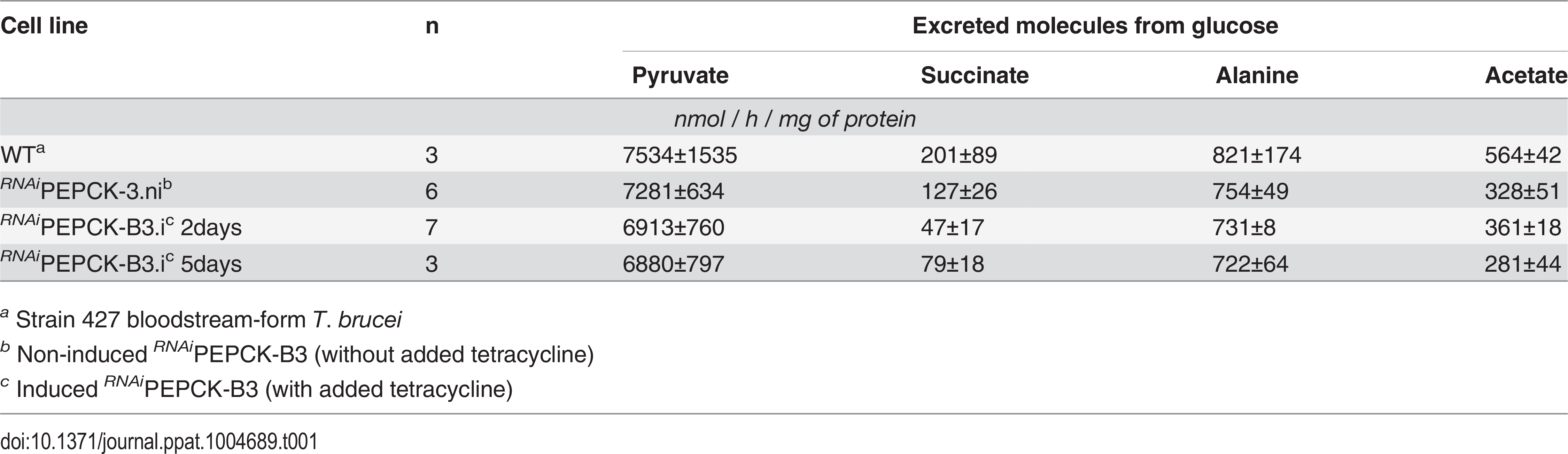 Production of succinate, pyruvate, alanine and acetate from glucose in PEPCK RNAi <i>T</i>. <i>brucei</i> measured by <sup>1</sup>H-NMR.